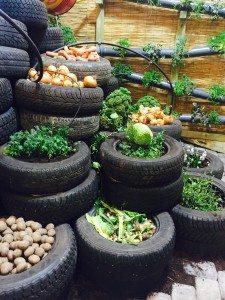 Grönsaksland